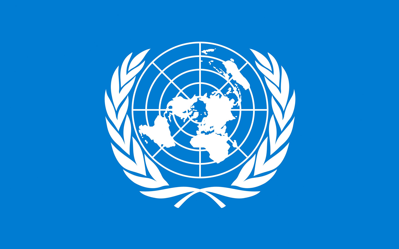 Relator de la ONU estaría en contra de la entrega de las pertenencias de Assange al Gobierno Norteamericano